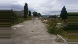 Primary Photo of Cicely Ln