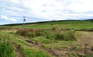 Primary photo of Site 2, Forres