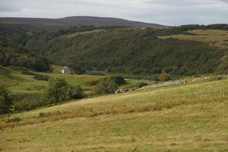 Primary Photo - Plot A, To Rear Of Strathview, Dunbeath - Commercial land plot for sale - 0.25 acres