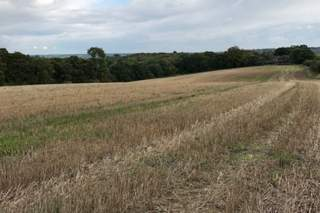 Primary Photo of Land At, Marlow