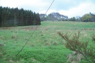 Primary Photo - Sibell Rd, Golspie - Commercial land plot for sale - 9.53 acres