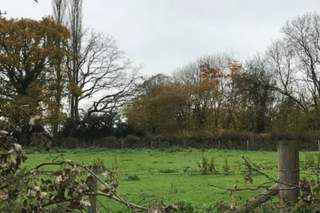 Primary Photo of Land at The Oak