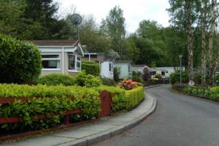 Primary Photo of Clyde Valley Caravan Park