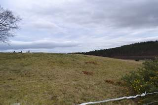 Primary Photo of East Site
