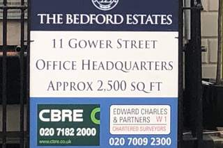 11 Gower Street picture No. 8