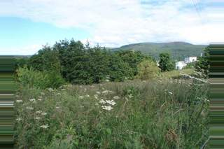 Primary Photo of Adjacent To Hillside House