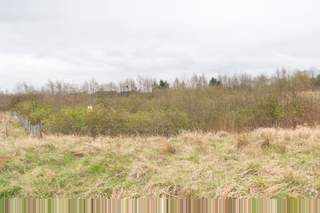 Primary Photo of Site 5