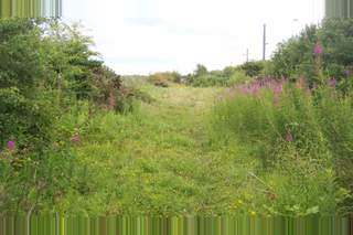 Primary Photo of Land by Railway Station, Chathill