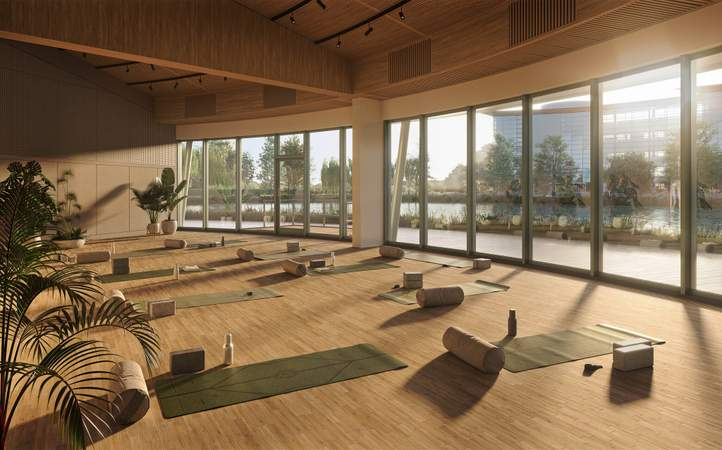 Studio Yoga Space - Campus, Reading International, Reading - Office for rent - 1,490 to 178,620 sq ft
