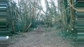 Primary Photo of St Fagans