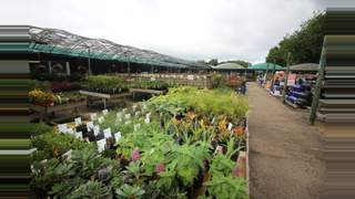 Primary Photo of Mill Race Garden Centre, New Road, Colchester, Essex, CO6 3QT