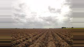 Primary Photo of 7.50 Acres Of Land, Branches Lane, Fleet Hargate, Holbeach, Lincolnshire, PE12 7BE
