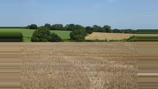 Primary Photo of On a Farm Business Tenancy 124 Acres - 50.5 ha. Land for Arable Use at High Woolaston Farm, Lydney, Gloucestershire, GL15 6PX